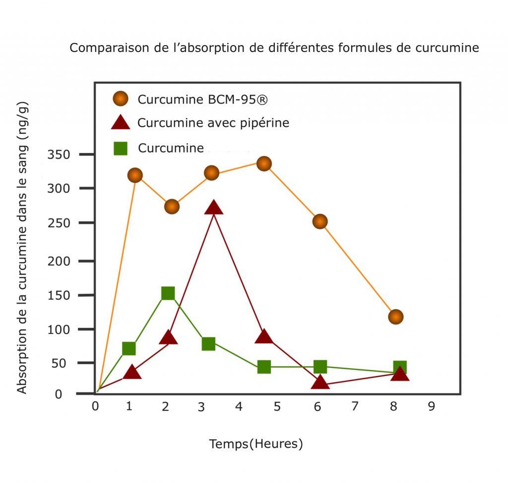 Synofit Bio-Curcumine BCM-95®